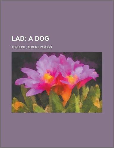 Lad; A Dog