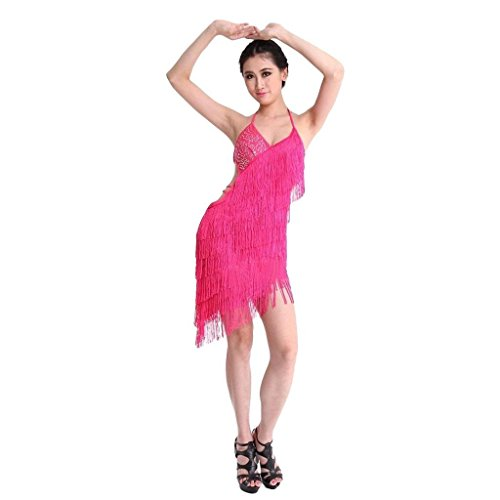 Sexy-Tassel-Fringe-Backless-Salsa-Samba-Rumba-Tango-Latin-Dance-Dress