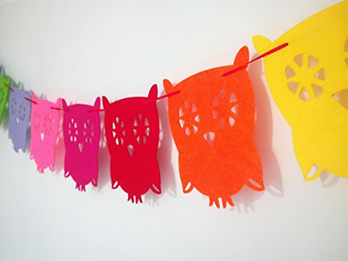 Owl Pal Party Themed Decorations Kit, Birthday Party Supplies, Birthday Party Banner, Set of 8 Pieces Colorful Owl (Owl Banner)