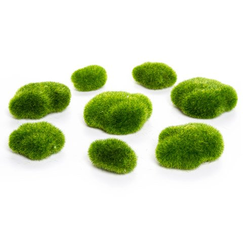 Darice® Moss Rocks - Green - Assorted Sizes - 8 pieces