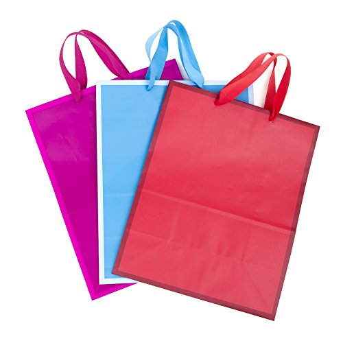 - Hallmark Large Solid Color Gift Bags (3 Pack)