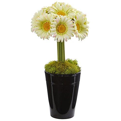 Nearly Natural 1630-CR Gerber Daisy Artificial Arrangement in Black Vase Silk, (Nearly Natural Gerber Daisy)