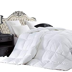 Egyptian Bedding LUXURIOUS 1200 Thread Count GOOSE DOWN Comforter, 1200TC - 100% Egyptian Cotton Cover, 750 Fill Power, 50 Oz Fill Weight, White Color by Egyptian Bedding