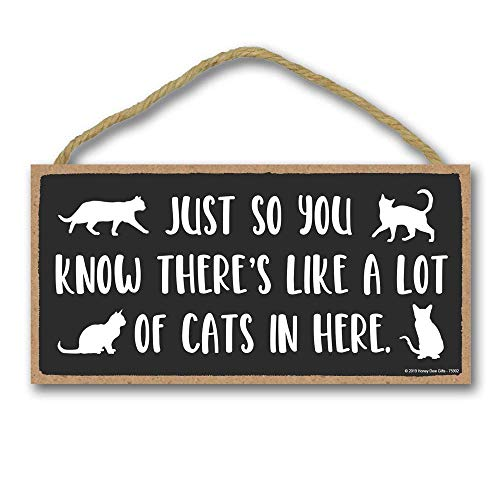 Honey Dew Gifts Door Sign, Just so You Know There's Like a Lot of Cats in Here 5 inch by 10 inch Hanging Wall Art,