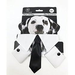 Silver Paw PGPA5166 - Disfraz de Perro de Boda Real, tamaño Mediano/Grande, Corbata y puños