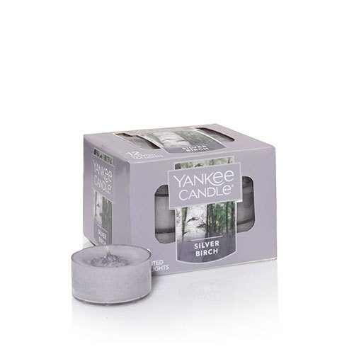 (Yankee Candle Silver Birch Tea Light Candle, Fresh Scent)