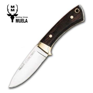 Muela cuchillos
