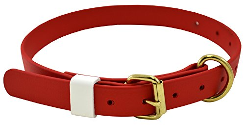 (J&J Dog Supplies Boithane Dog Collar 1