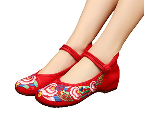 AvaCostume Womens Ethnic Style Embroidery Rubber Sole Dancing Mary Jane Red