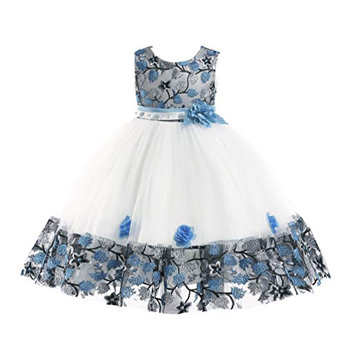 - JIANLANPTT Flower Girls Crew Neck Sleeveless Tulle Dresses Embroidered Lace Floral Children Party Dress 2-3Years White Sky Blue