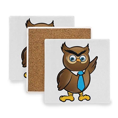 (Large Square Drink Coasters,An Owl With Tie Ceramic Thirsty Stone With Cork Back Cup mats Protect Your Furniture From Spills, Scratches,Water Rings and Damage 2pcs )