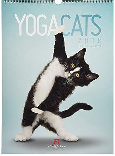 Yoga Cats 2018: Amazon.es: Daniel Borris: Libros en idiomas ...