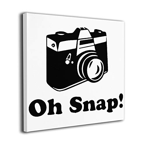WONDER 4 Oh Snap Camera Modern Wall Decor/Home Decor Canvas Wall Art Stretched and Ready to Hang