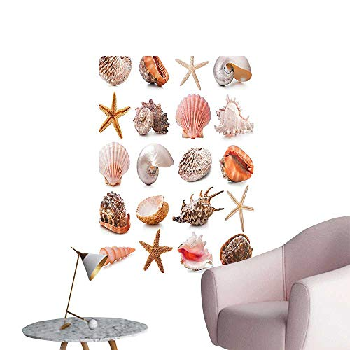 Wall Stickers for Living Room Scallop Nautilus Mollusk Summer Holiday Nature Spiral Marine Vinyl Wall Stickers Print,16