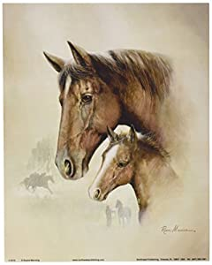Amazoncom 4 Horse Art Prints Mare Pictures Foal Posters Home
