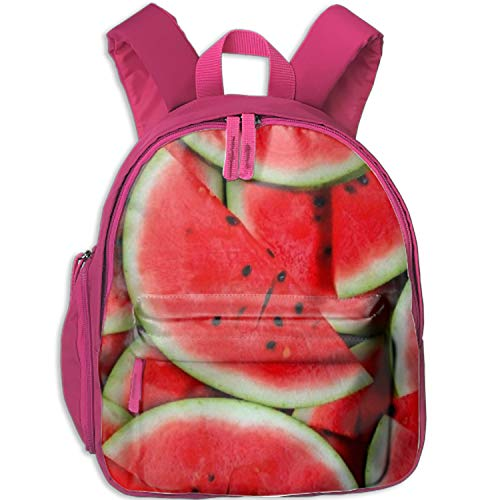 Most Popular Sturdy Watermelon Pieces Padded Backpack for