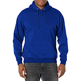 Hanes mens Pullover Ecosmart Fleece Hooded Sweatshirt,Deep Royal,X-Large