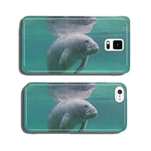 Florida Manatee Underwater cell phone cover case iPhone6