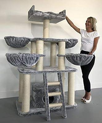 Rascador para gatos grandes Panther PLUS Gris calro baratos arbol xxl maine coon gato adultos con hamaca gigante sisal muebles sofa escalador torre Árboles rascadores cama cueva repuesto medianos: Amazon.es: Productos para