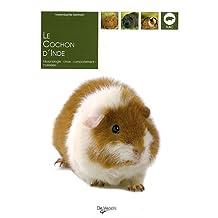 Cochon d'Inde (Le)