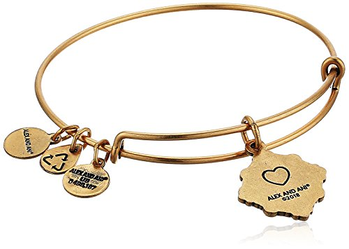 Alex and Ani Womens Because I Love You A18BILY05RG Grandmother Charm Bangle Bracelet, Rafaelian Gold, Expandable