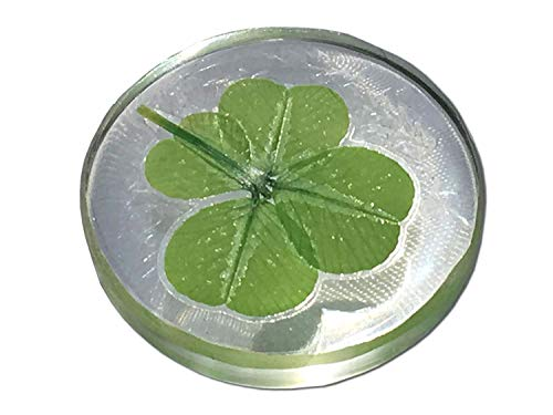 KIN-HEBI Real four leaf clover Good Luck Pocket Token, Preserved, Including Crystal Quartz, 1.25""