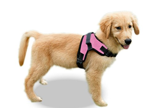 Copatchy No Pull Reflective Adjustable Dog Harness with Handle (Small, Pink)