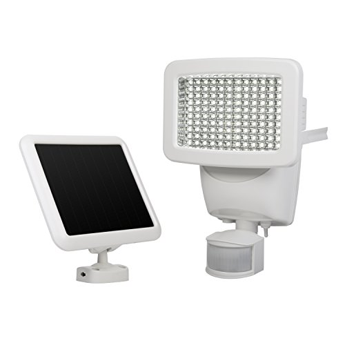 Sunforce Solar Motion Light in Florida - 6