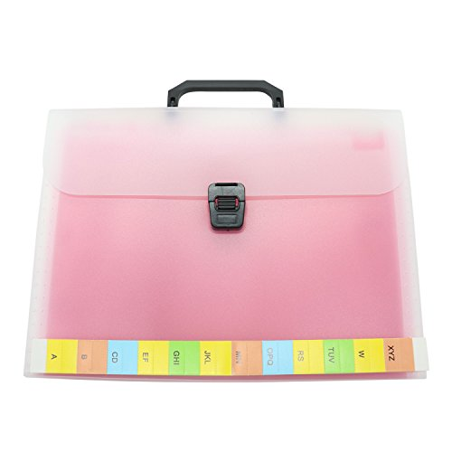 Red File Folder Labels (13-Pockets A4 Expanding Accordion File Folder with Handle,Buckle Closure(Red))