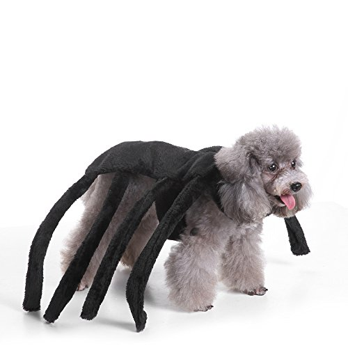 Spider Outfit For Dog (S-Lifeeling Spider Dog Costumes Holiday Halloween Christmas Pet Clothes Soft Comfortable Dog Clothes)