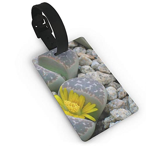 Price comparison product image Miracle Of Nature Luggage Tag / Bright Rubber Tags