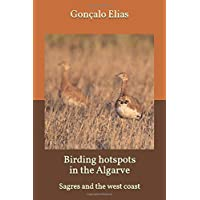 Birding hotspots in the Algarve: Sagres and the west coast