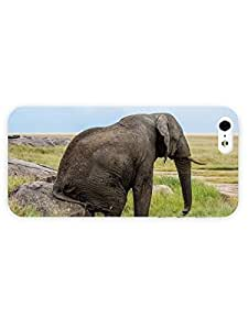 3d Full Wrap Case for iPhone 5/5s Animal Elephant Sitting On The Rock