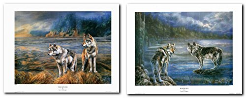 Two Grey Wolf Native American Northwest Black Sea Wild Animal Wall Decor Art Print Poster (22x28) (Wolf 22 Sea)