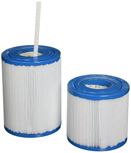 Filbur FC-2388 Antimicrobial Replacement Filter Cartridge for Rainbow/Pentair DSF Combo Pool and Spa Filter ()