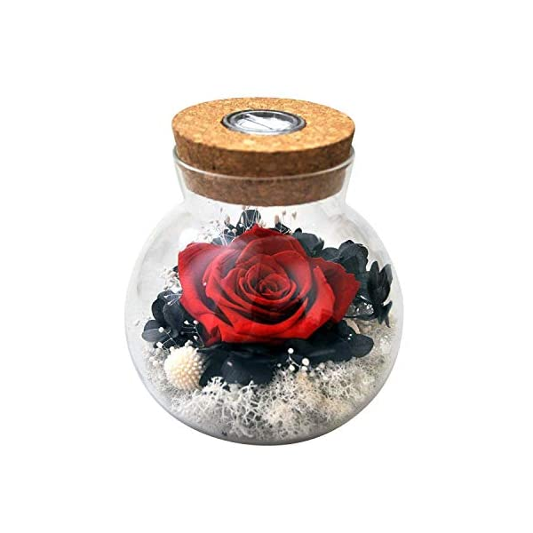 AESTHING Handmade Preserved Real Rose Present with Gorgeous Led Mood Light, Upscale Gift of Exquisite Eternal Flower for Birthday, Anniversary, Valentine's Day, Christmas, Thanksgiving Day (Yellow)