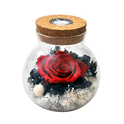 AESTHING Handmade Preserved Real Rose Present Gorgeous Led Mood Light, Upscale Gift Exquisite Eternal Flower Birthday, Anniversary, Valentine's Day, Christmas, Thanksgiving Day ()