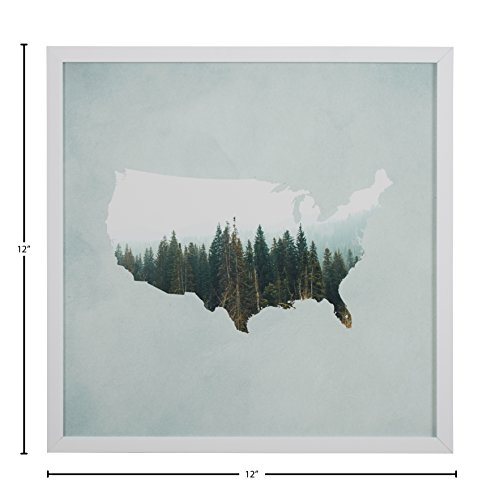 """41CSCqR9y8L American Forest Map Print in White Wood Frame, 12"""" x 12"""""""