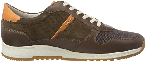 Sioux Rodon, Sneaker Uomo Marrone (Carafe/Orange-kombi 009)