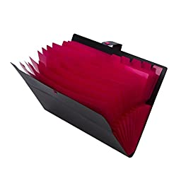 Expandable Portable Accordion File Document Folder File Organizer with Snap Button A4 and Letter Size 12 Pockets Black
