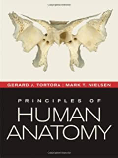 Amazon principles of human anatomy binder ready version principles of human anatomy fandeluxe Images