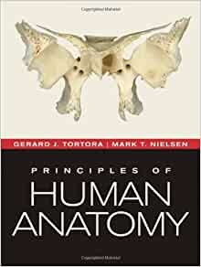 Principles of anatomy and physiology tortora pdf download free