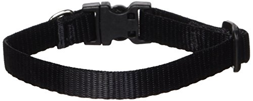 Lupine 1/2-Inch Adjustable Dog Collar