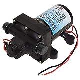 Valterra LLC P25201 Hydromax Automatic RV Freshwater Pump - 3.0 GPM