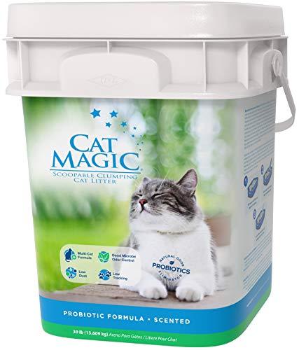 Cat Magic Scented Clumping Clay Cat Litter