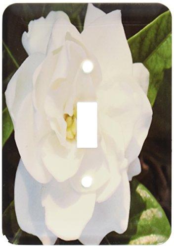 3dRose lsp_58584_1 White Gardenia Single Toggle Switch ()