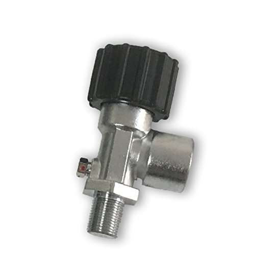 Compressed air carbon fiber cylinder valve in 4500 psi by Acecare