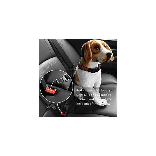 41rEeleyn7L AODOOR Auto Hunde Sicherheitsgurt Hundegurt Sicherheitsgeschirr Hunde Adapter Auto sicherheitsgurt