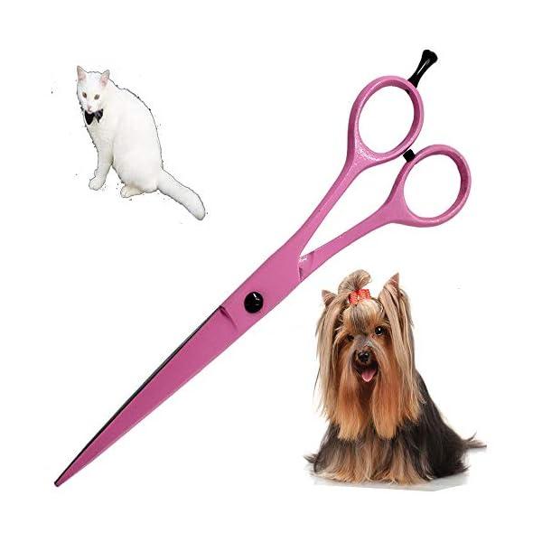 Tijeras de peluquería profesionales extra largo 7 Peluquería Tijeras -incomparable Color Rosa apta para de gatos y… 8