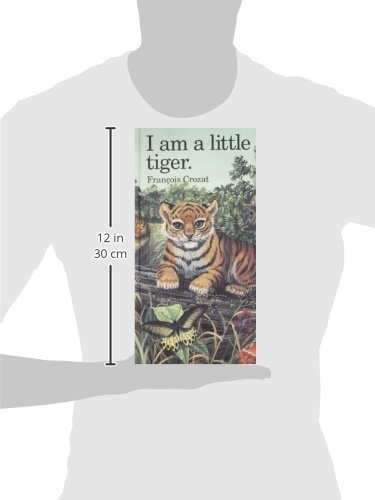 I Am a Little Tiger: Large (''I Am'' Series) by Barron's Educational Series (Image #2)